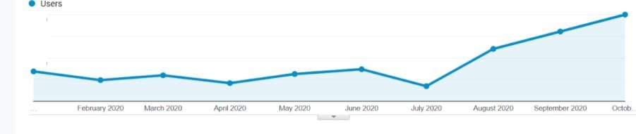 traffic to the website increased